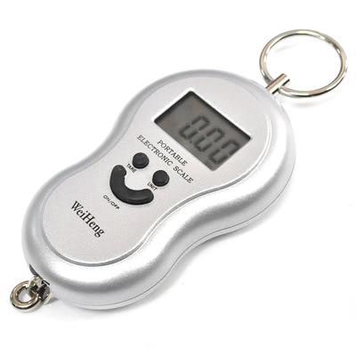 Digital portable scale luggage / fish scale max 40kg