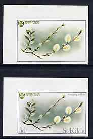 St kilda 1969 flowers 5d (creeping willow) imperf single