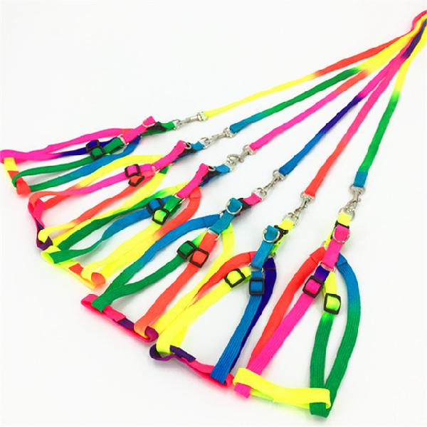 Pet supplies special colorful traction rope dog rope golden