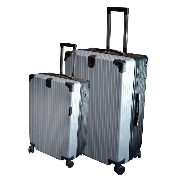 Eco earth berlin 2 pc luggage spinner set | silver/black
