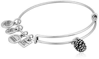 Alex and ani charity by design, pinecone ewb bangle bracelet