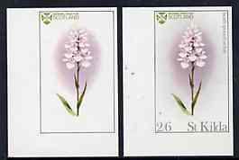 St kilda 1969 flowers 2s6d (heath spotted orchid) imperf