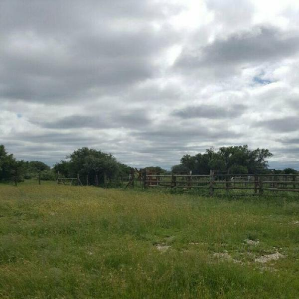 Campbell: sublime breeding farm and potential game farm