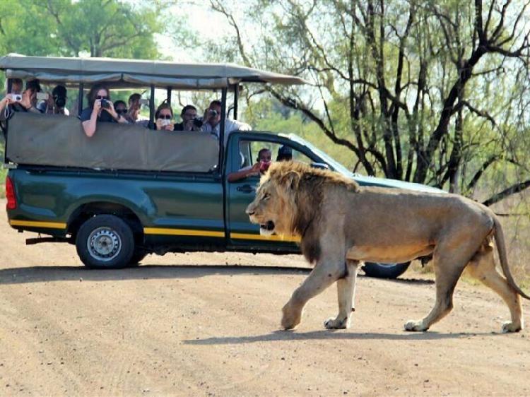 3 night, 4 day tented lodge kruger safari