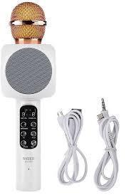 Wireless microphone hifi speaker / ws-1816