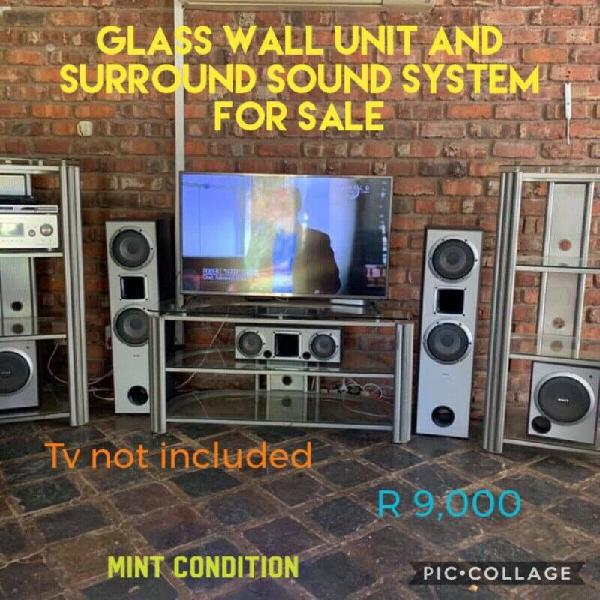 Sony surround system with glass wall unit