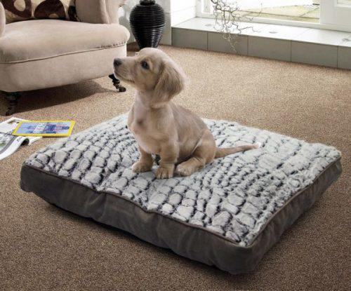 Medium deluxe pets day bed with detachable pillow warm sleep