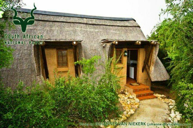 Matyholweni rest camp addo elephant national park sanparks
