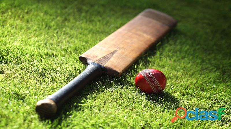 Fantasy Cricket Website & App Development Expert