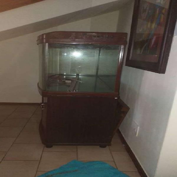 500l fish tank for sale