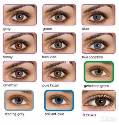 Freshlook contact lenses - honey