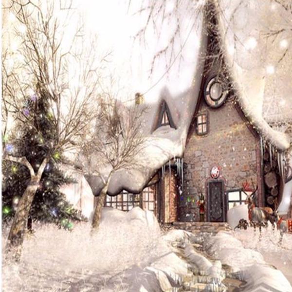 10x10FT Vinyl Christmas Snow Building Photography Backdrop