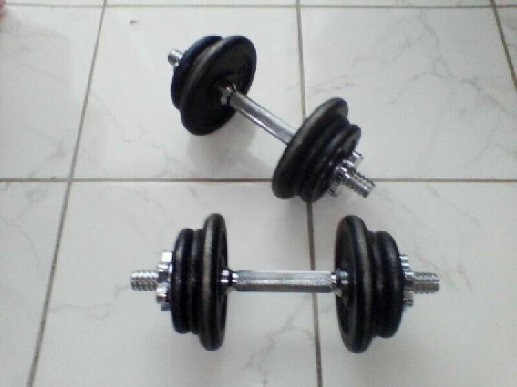 16kg iron dumbbell set