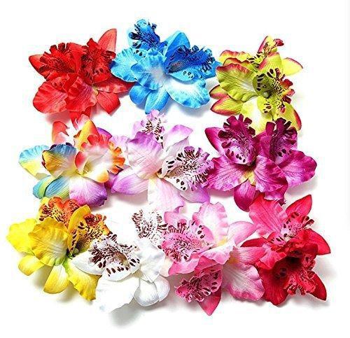Morningrising 20 pcs multicolor women girls orchid flower