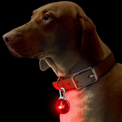 Dog puppy pet collar pendant led safety clip-on night light