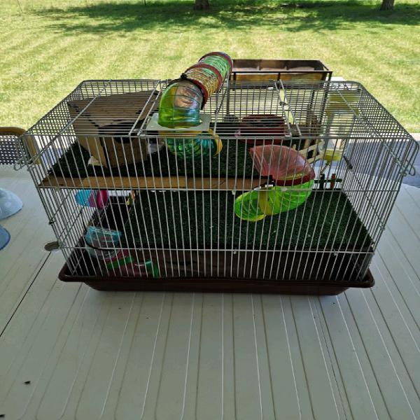 Hamster en hok