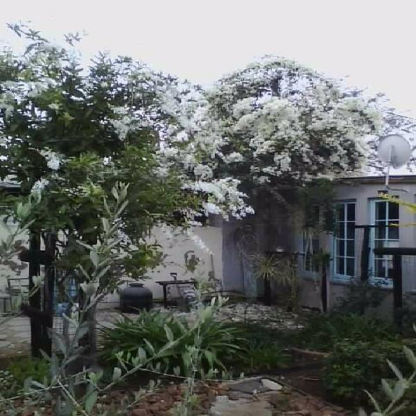 Air conditioned garden cottage/apartment to rent in secure