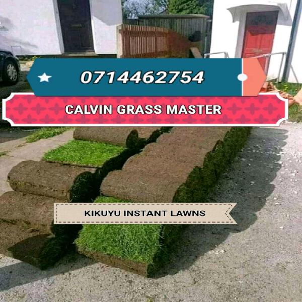 Free delivery for kikuyu grass at r14