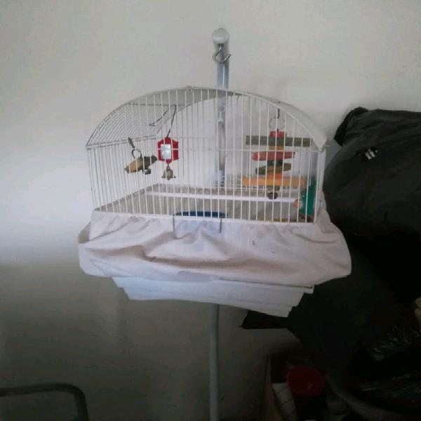 Modern bird cage including stand and assesories