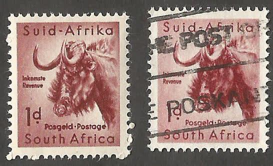 Union of south africa animal definitive 1d unchecked