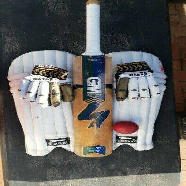 Junior cricket set