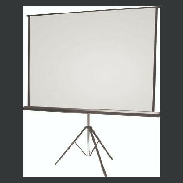 Pull up projection screen with stand for sale