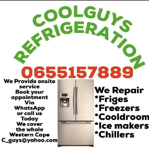 Fridge and freezers repairs