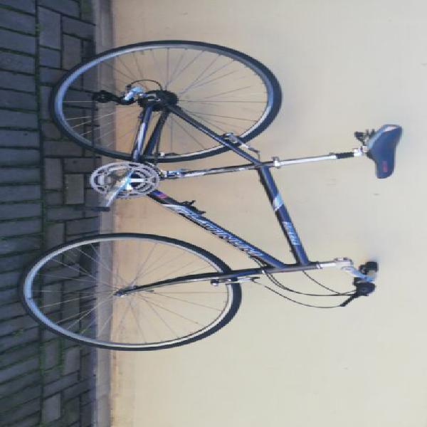 Raleigh roadbike
