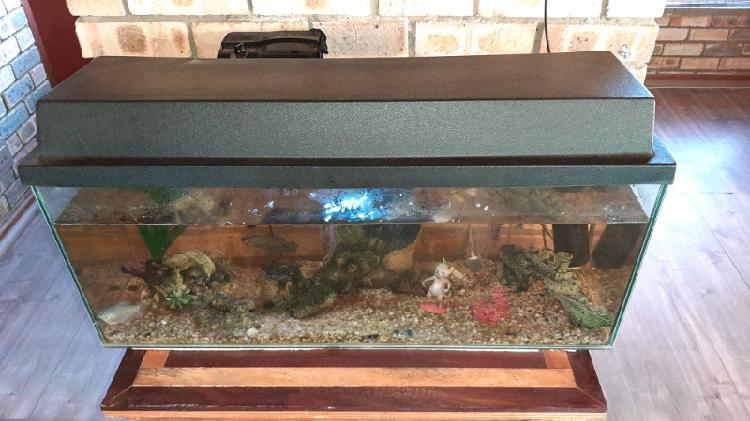 Fishtank - fully fuctional @r1290