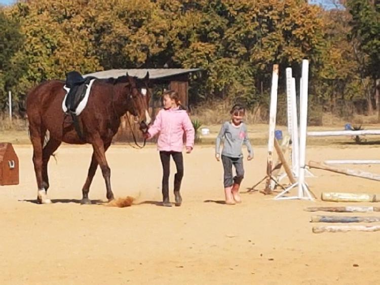 Horse trails and riding lessons gestremdes ook