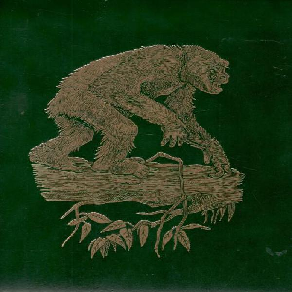 The great apes - between two worlds - deluxe edition