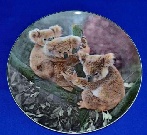 Royal doulton series ware collectors / decorative plate