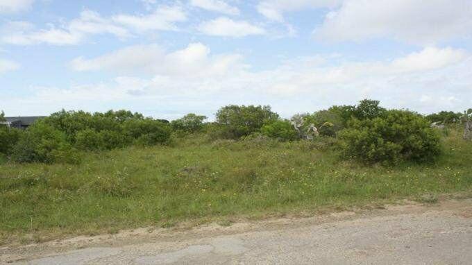 Land land for sale in bushmans river eastern cape