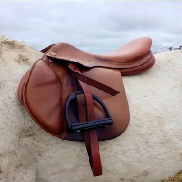 Prestige golden star saddle