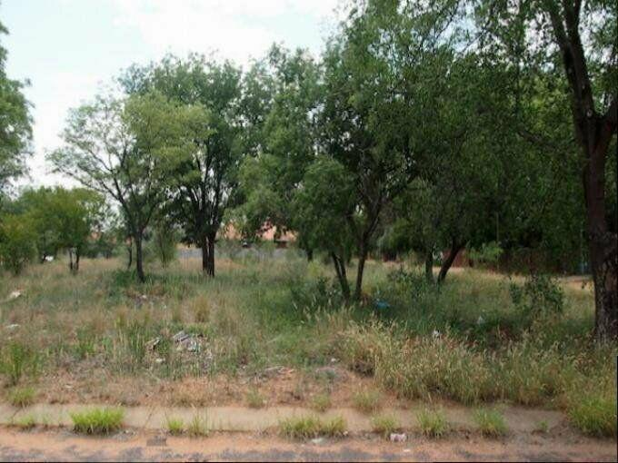 Land land for sale limpopo