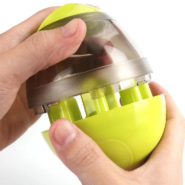 Pet smart feeder food dispenser leakage training education
