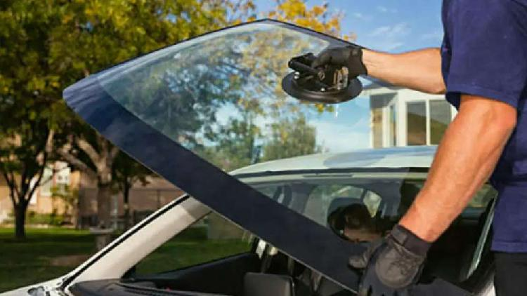 Windscreens and all other vehicle and building glass