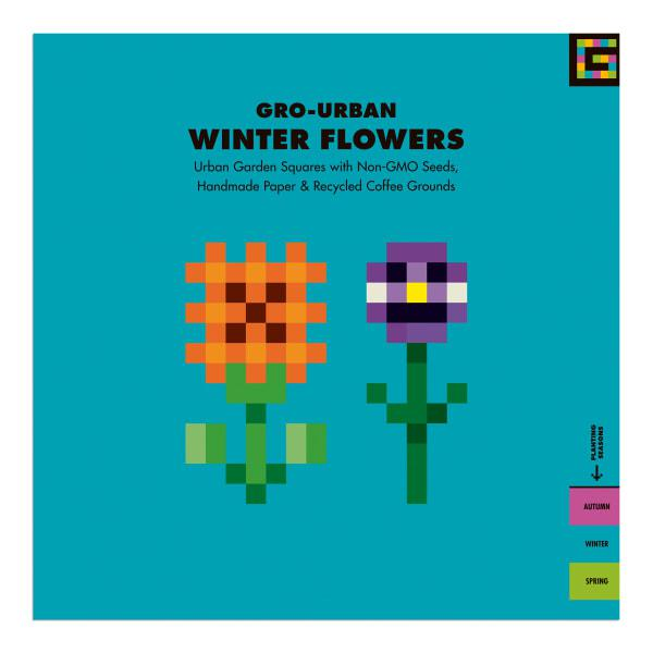 Gro urban winter flowers urban garden seed square