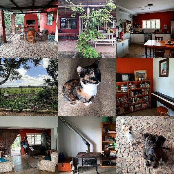 Raithby farm cottage in need of 1 more housemate.