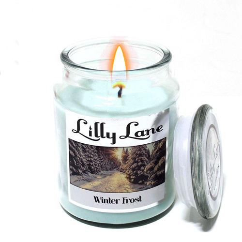 Lilly lane winter frost scented candle large
