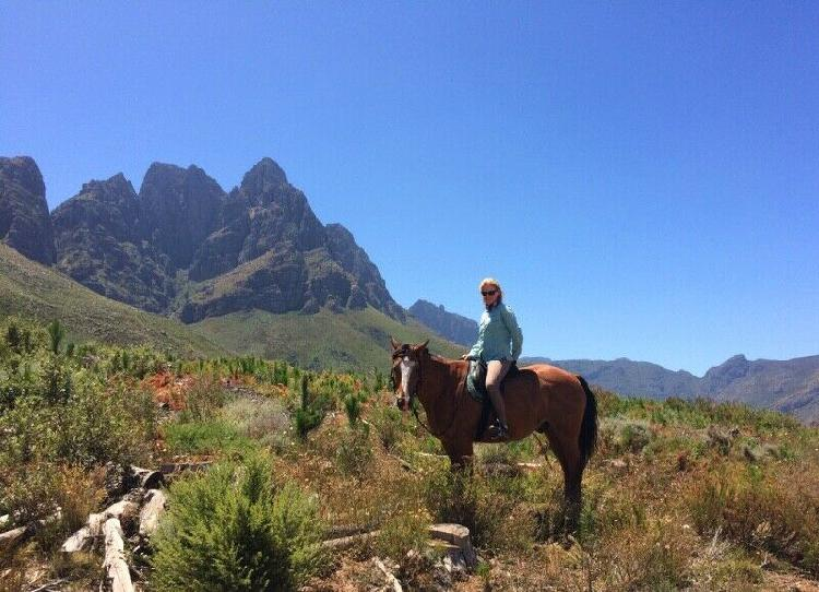 Livery (grazing) offered 4kms from stellenbosh