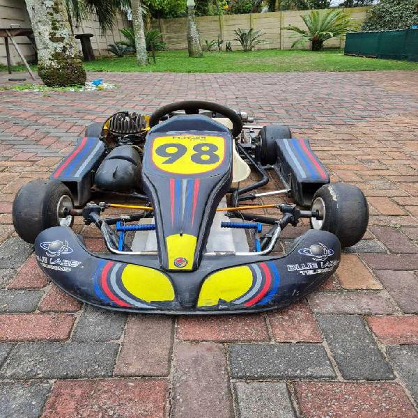 Racing gocart for sale