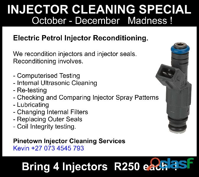 Pinetown Injector Cleaning Services 2
