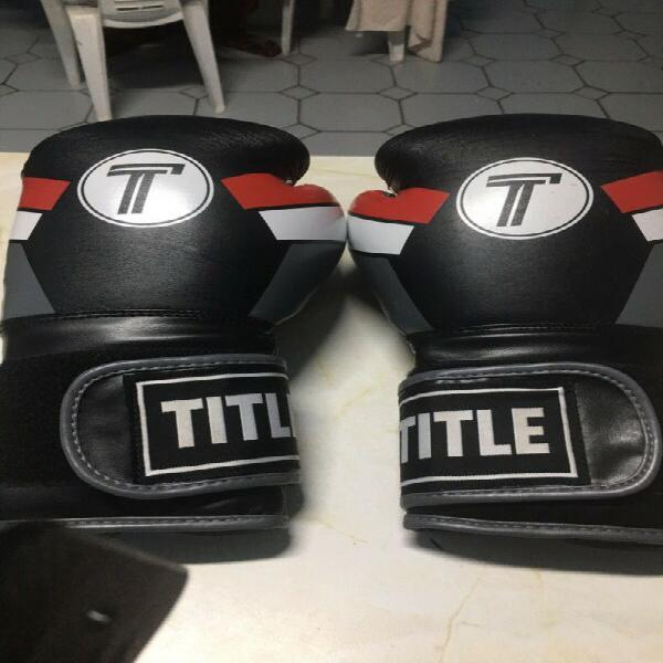 Title 16oz boxing gloves