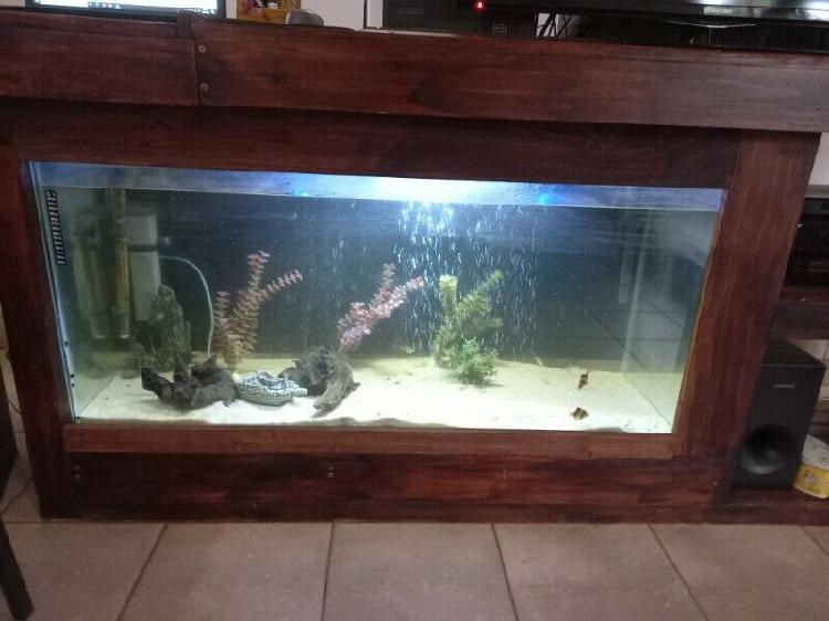 Fish tank + wooden tv stand
