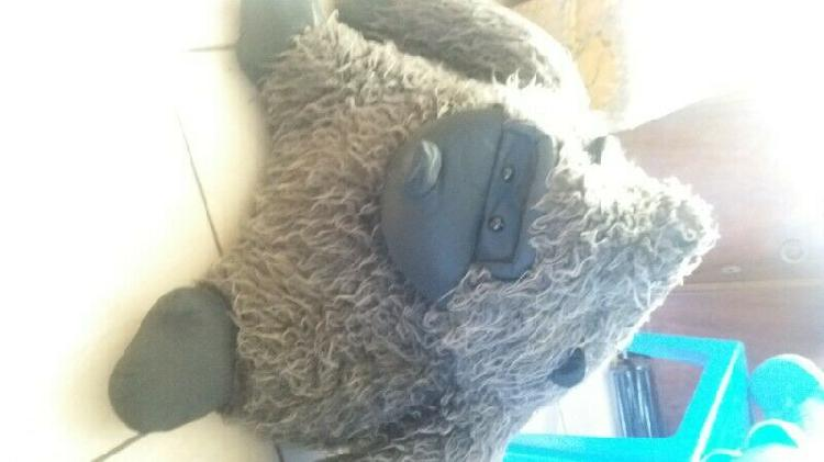 Selling big teddy for 250