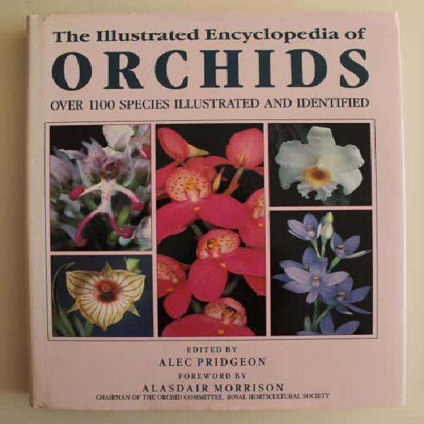 Illustrated encyclopedia of orchids - pridgeon