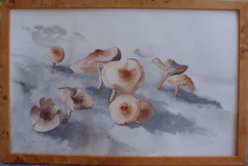 Original rowena bush, watercolour - listed artist