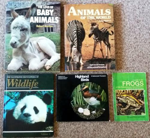Animals of the world, love of baby animals, illust. ency. of